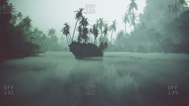 Misty lake in jungle with palms