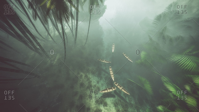Wooden kayaks on misty lake in jungle with palms