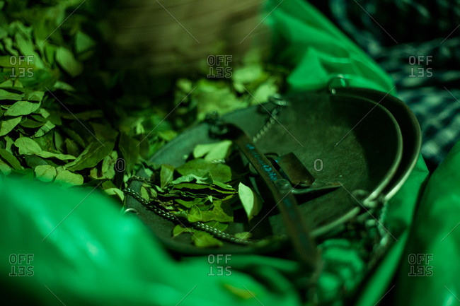 Coca leaves for sale at Bolivian market
