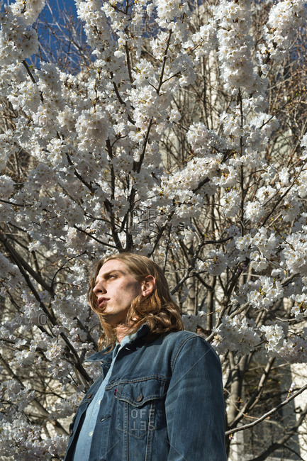Low section view of a young man standing in front a blooming tree