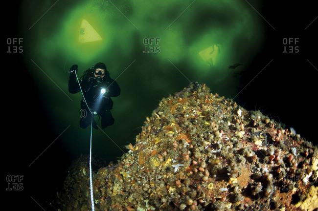 ice diver under water