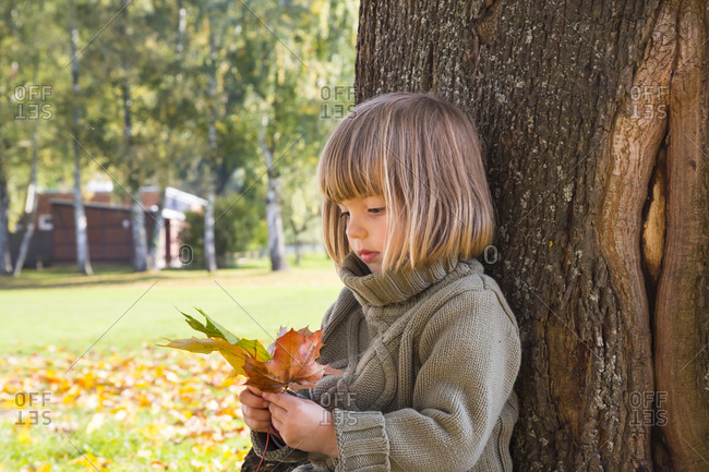 Little girl leaning at tree trunk looking at bunch of autumn leaves in her hands