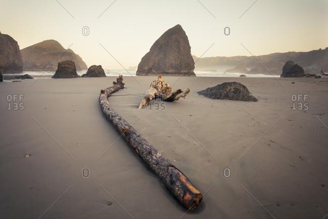 Sea stacks and large wood debris at Meyers Creek Beach, Pistol River State Park, Oregon