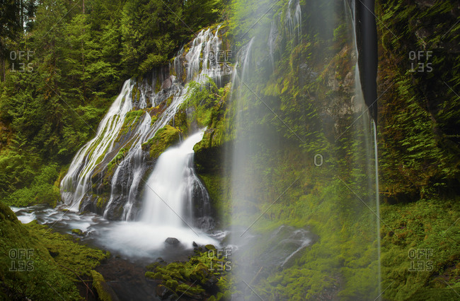 Numerous waterfalls cascade over a lush vegetated cliffs at Panther Creek Falls in Carson, Washington
