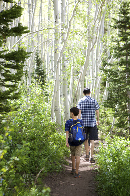 A father and son walk through birch forest
