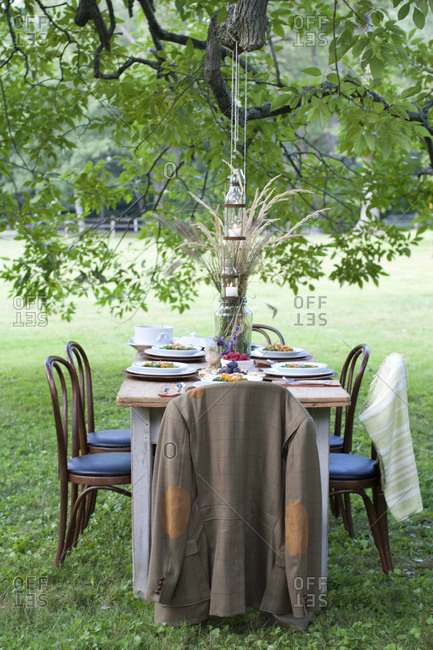 Outdoor table setting under a tree