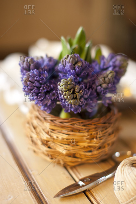 Purple flowers as decoration
