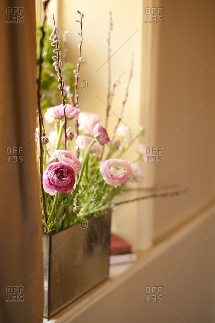 Peonies in house interior
