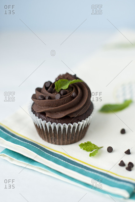 Chocolate cupcake with mint leaves