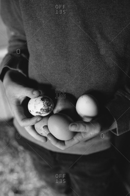 Boy holding fresh eggs