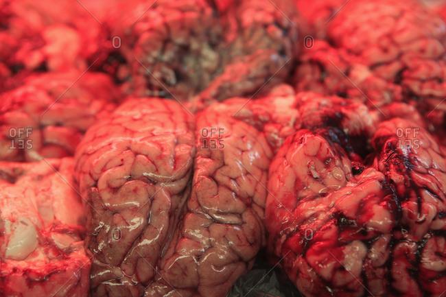 Full frame shot of beef brains