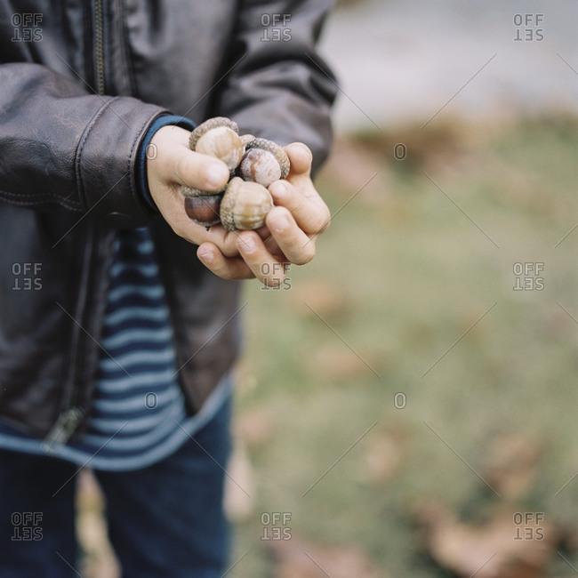 Boy in leather jacket holding acorns