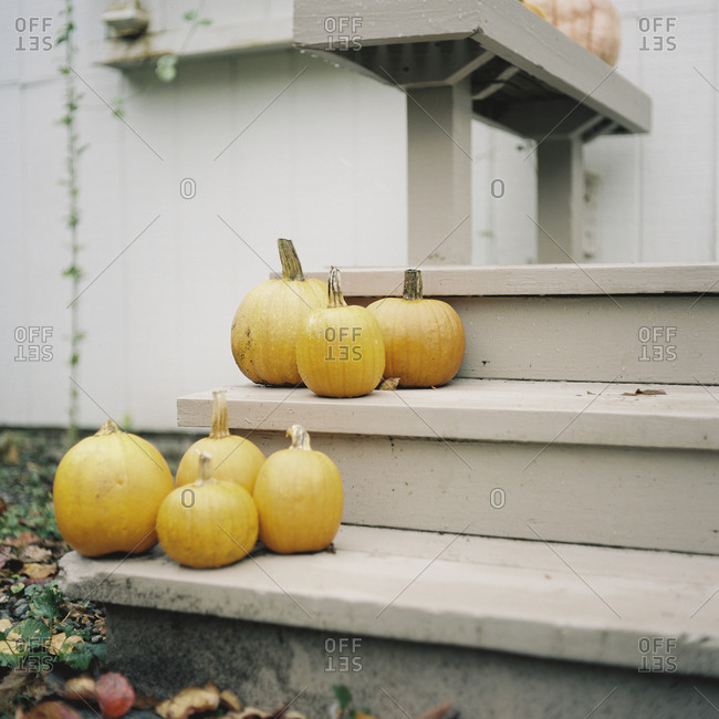 Several pumpkins on porch steps