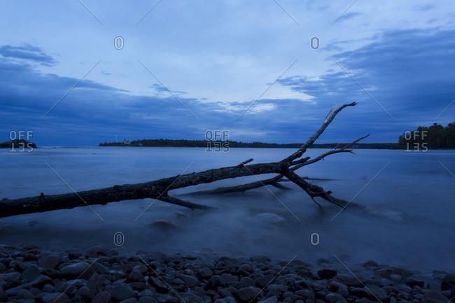 A tree trunk falls in the lake at Copper Harbor, Michigan