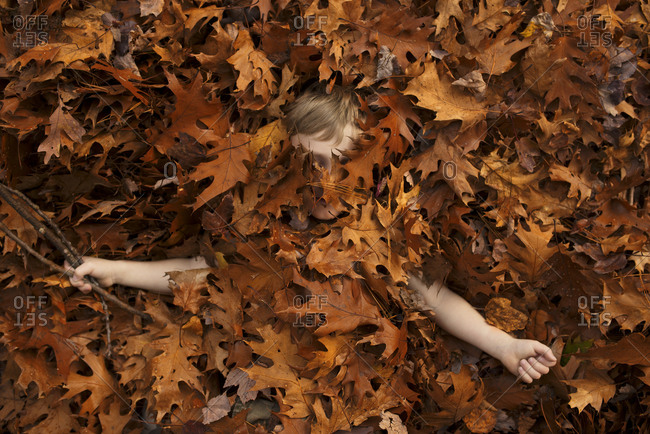 Young boy covered in autumn leaves