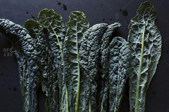 Kale leaves side by side