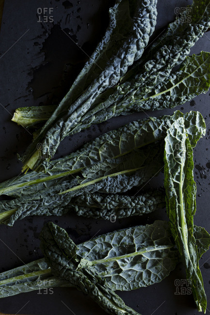 Close up of fresh kale leaves