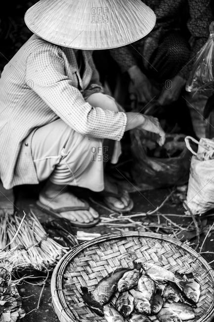Vietnamese Man Selling Fish at the Street Market, Hoi An, Vietnam