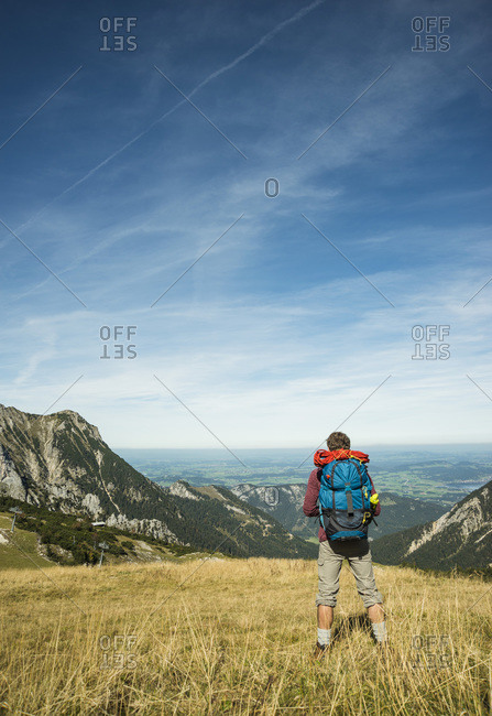 Young hiker looking at view, Tannheimer Tal,