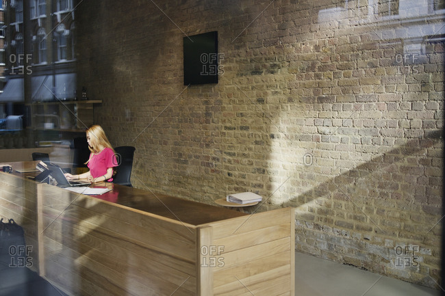 Young woman working at the reception desk