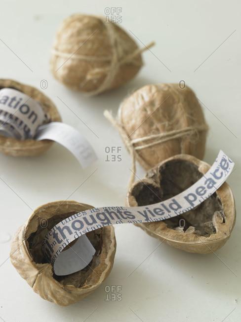 Open walnut shells reveal fortunes