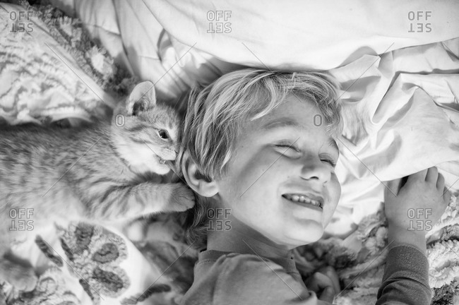 A kitten plays with a little boy