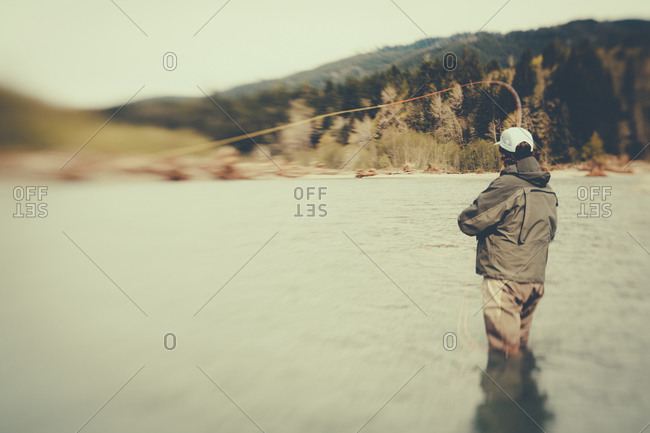 Fly-fisherman standing in river, casting line, Hoh River, Olympic NP, WA, USA