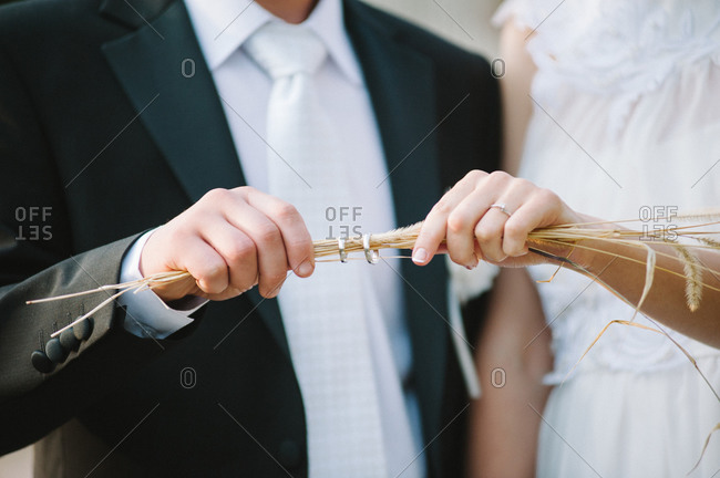 Couple holding the wedding rings on wheat straws