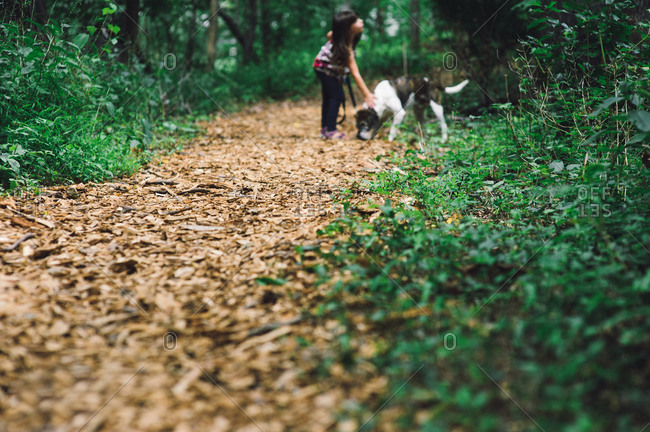 Girl walking her dog in a forest