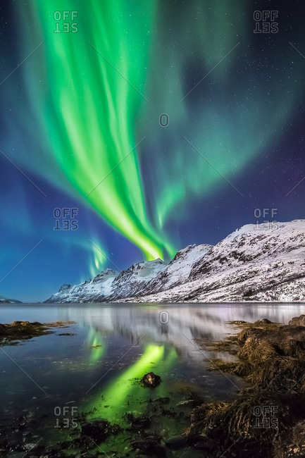 Northern Lights Reflected in the Water of a Norwegian Fjord in Winter