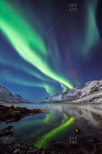 Northern Lights Reflected in the Water of a Norwegian Fjord in a Winter Night