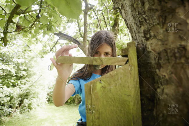 A young girl checking a nesting box on a tree trunk