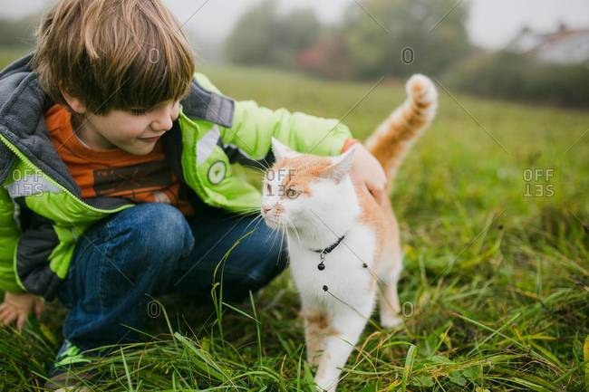 Young boy petting a tabby cat