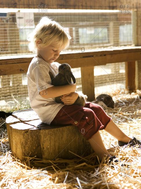 Boy hugging a bunny