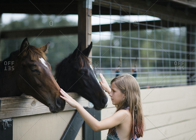 Girl petting horses in a stall