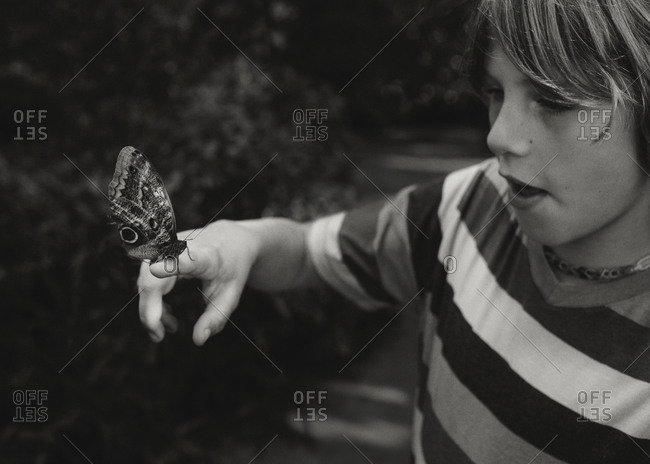 Young boy holding a butterfly on his finger
