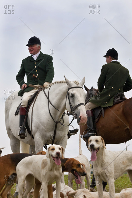 Gloucestershire, United Kingdom - August 8, 2010: Horsemen and hounds at a fox hunting