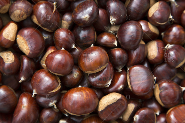 Close up of chestnuts
