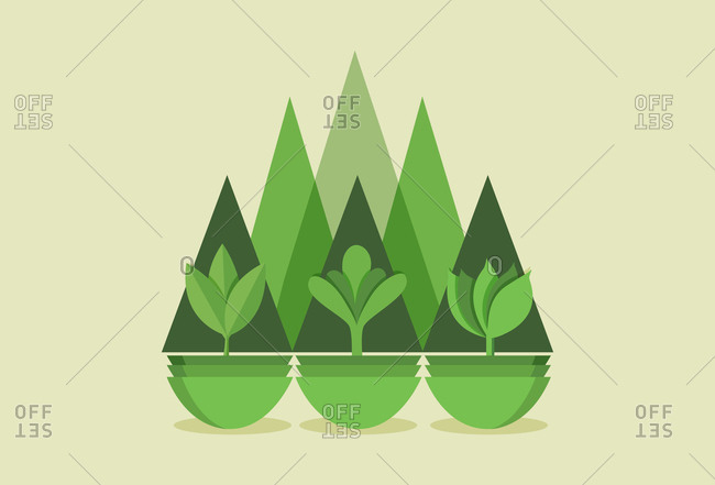 An abstract illustration of plants