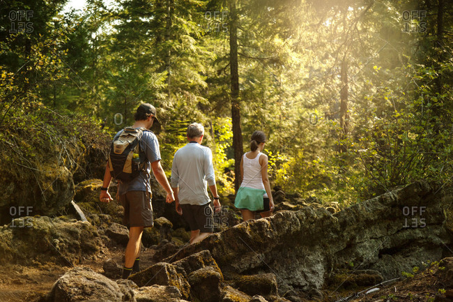 Three people hike through the woods