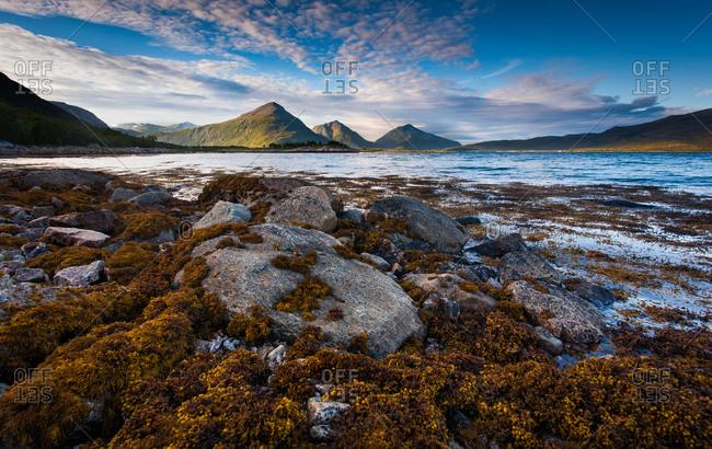 Rocks on the shore of a lake in Lofoten, Norway