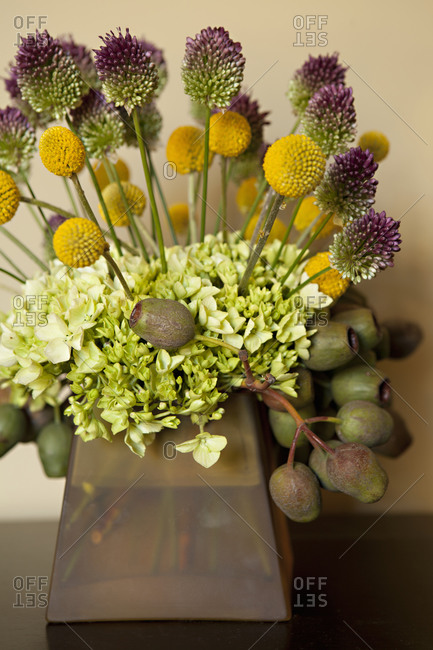 A bouquet of Billy Ball flowers