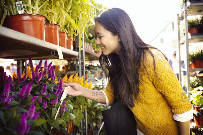 Woman looking at flowered plants
