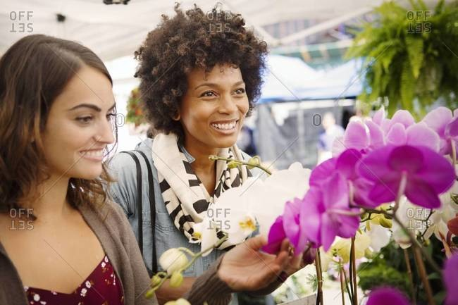 Women looking at orchid plants