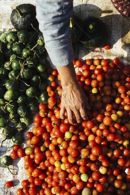 Tomatoes in Laotian market