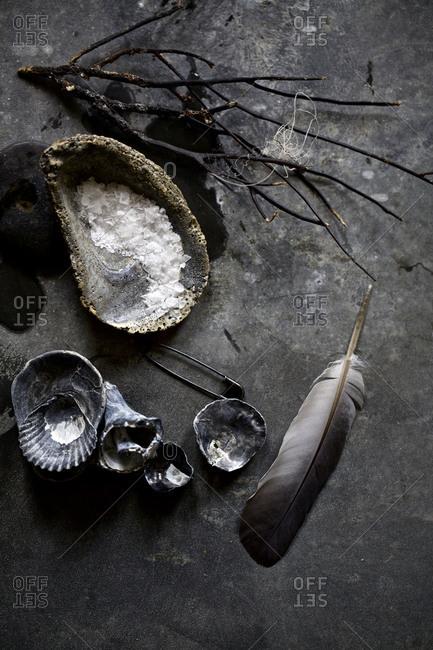 Arrangement of dark, shells, salt, sticks, and a feather