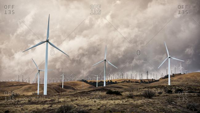 Tehachapi Pass Wind Farm at sunset, California