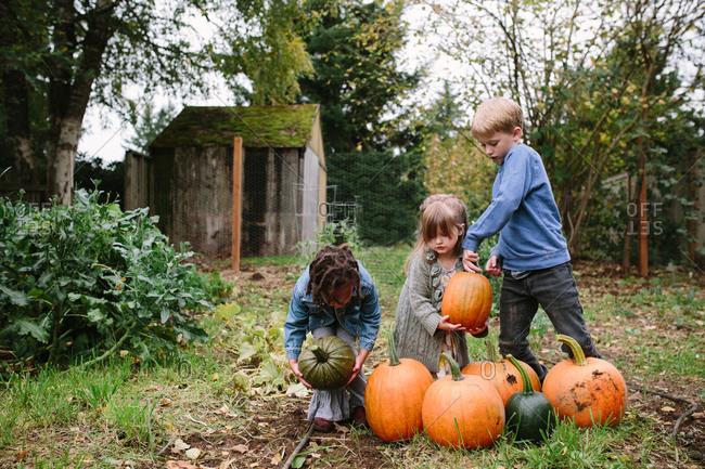 Children picking pumpkins in garden