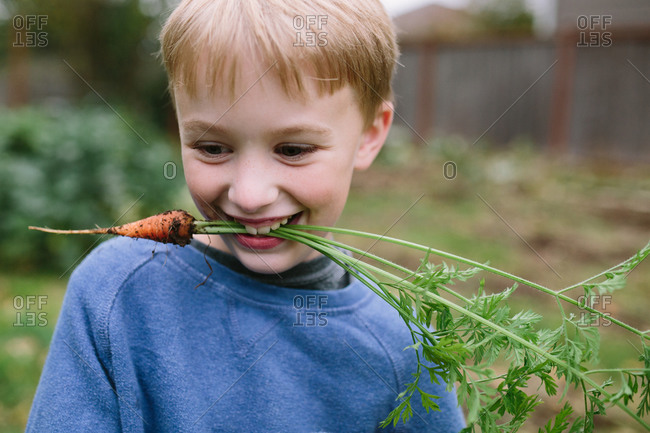 Boy smiling with freshly picked carrot in his mouth