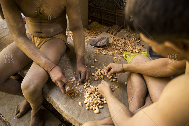 Kushti wrestlers grinding up almonds, Varanasi, India
